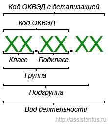 Расшифровка структуры ОКВЭД