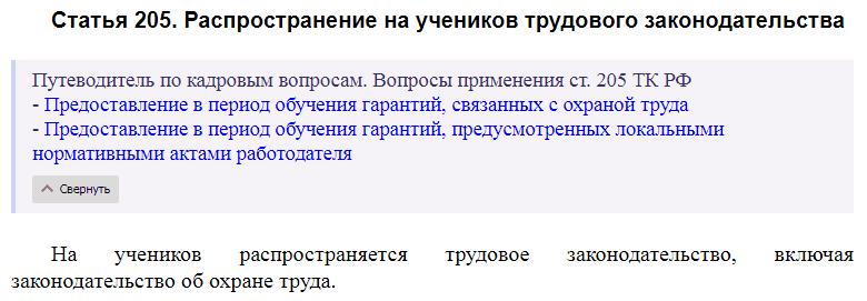 Статья 205 ТК РФ