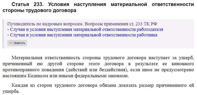 Статья 233 ТК РФ